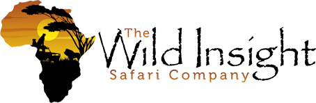 Best African Safaris | The Wild Insight Safari Company